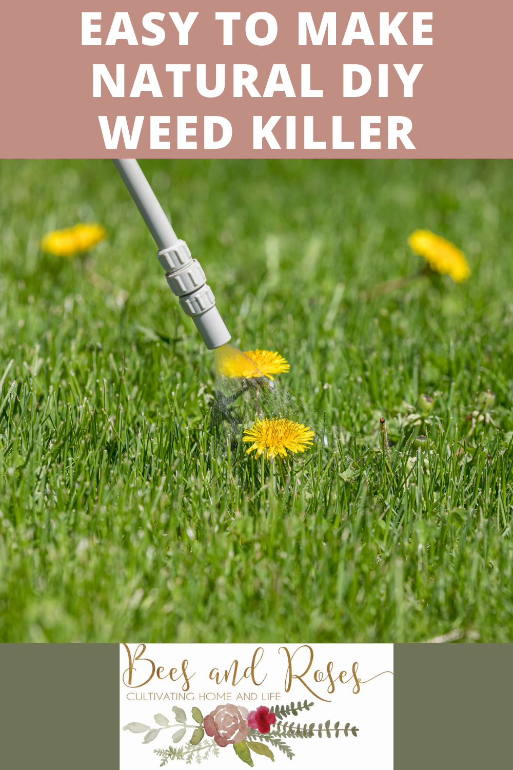 Beesandroses.com is your new guide to all things garden related! Find all all you need to know about growing healthy, thriving plants! Keep out unwanted weeds in a natural way with this super easy DIY weed killer!